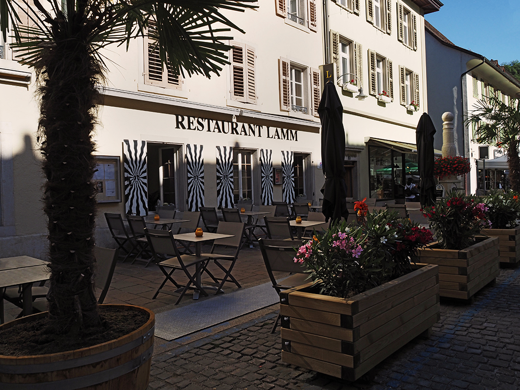 Das Restaurant von aussen mit der Boulevard-Bestuhulg und den Pflanzen.